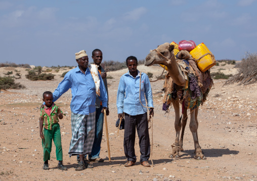 Somali family collecting water with their camel, Dhagaxbuur region, Degehabur, Somaliland