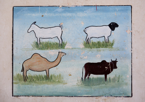 An advertisement painting for livestock dairy products, Boorama, Somaliland