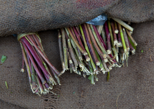 Khat stalks sticking out of a canvas sack, Boorama, Somaliland