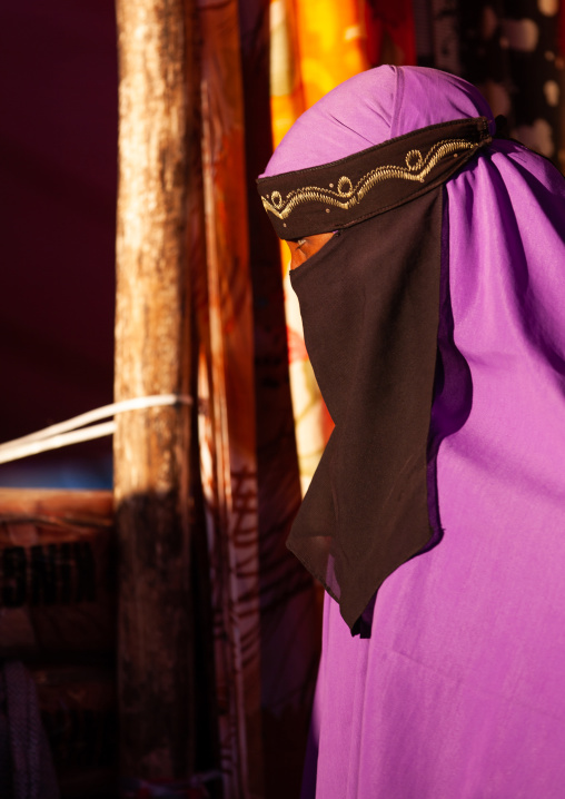 Portrait of a somali woman wearing a niqab, Woqooyi galbeed region, Hargeisa, Somaliland