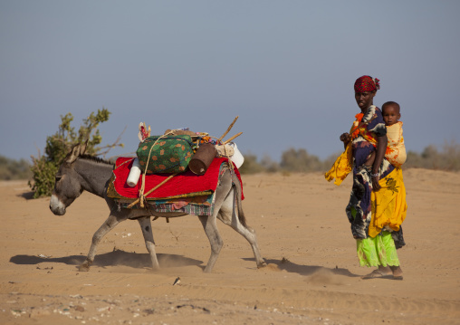 A Woman With Her Child On Her Back Carrying Luggage On A Mule, Zeila, Somaliland