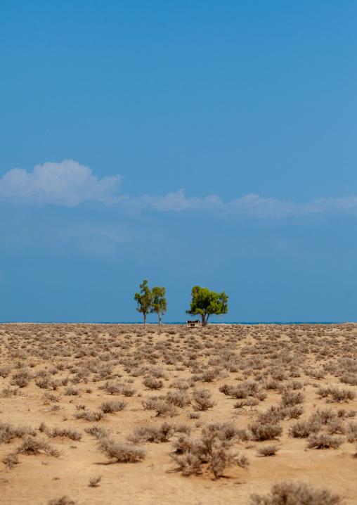 A somali hut called aqal in the desert, Awdal region, Lughaya, Somaliland