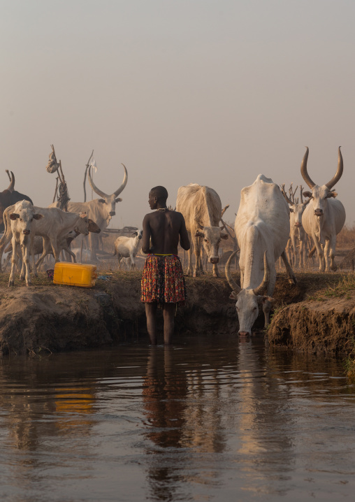 Mundari tribe woman collecting water in the river Nile, Central Equatoria, Terekeka, South Sudan