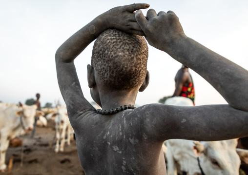 Mundari tribe boy taking care of the long horns cows in a camp, Central Equatoria, Terekeka, South Sudan
