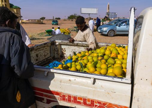 Sudanese people buying oranges in the back of a Hilux Toyata car, Khartoum State, Khartoum, Sudan