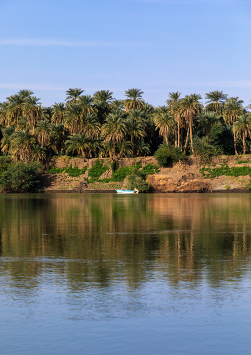 Plam trees and boat on the bank of river Nile, Northern State, El-Kurru, Sudan