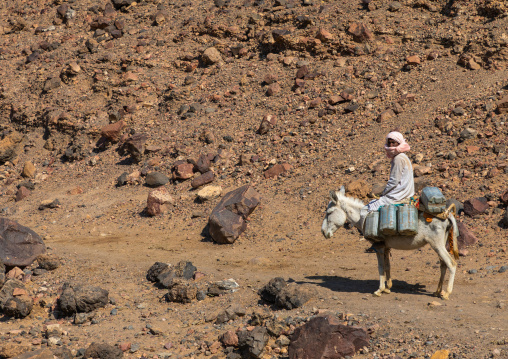 Bisharin nomad man collecting salt in Atrun crater, Bayuda desert, Atrun, Sudan
