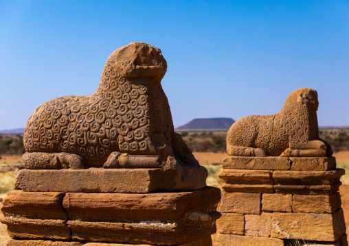 A row of rams with tidy woollen curls is guarding the access way to the temple of Amun, Nubia, Naqa, Sudan
