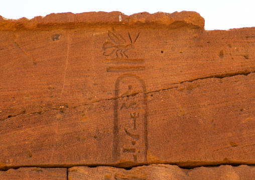 Relief of a bee on lion temple of Apedemak, Nubia, Naqa, Sudan