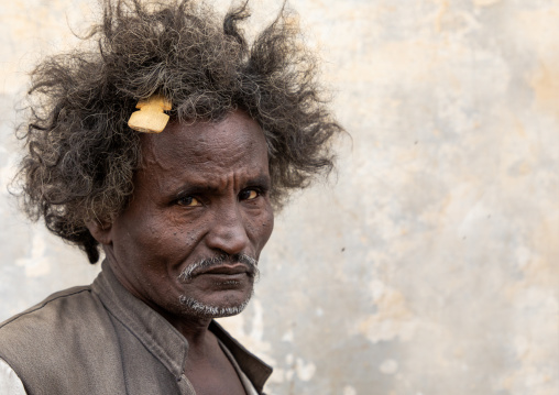 Portrait of a Beja tribe man with a wooden comb in the hair, Red Sea State, Port Sudan, Sudan