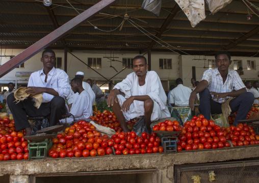 Sudan, Khartoum State, Omdurman, tomato sellers at market