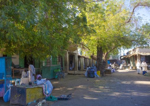 Sudan, Northern Province, Dongola, bazaar street