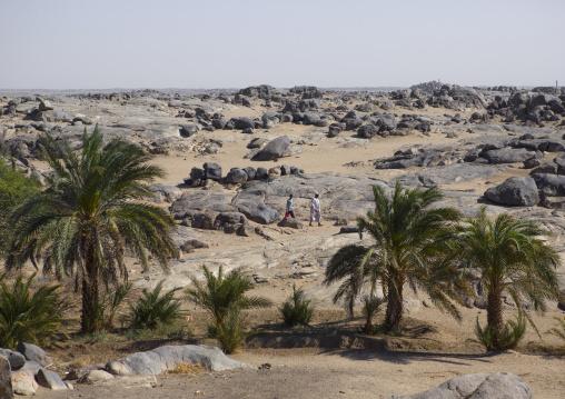 Sudan, Nubia, Tumbus, arid landscape