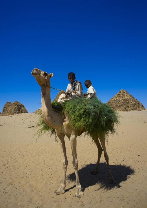 Sudan, Nubia, Nuri, kids on a camel in front of the royal pyramids of napata