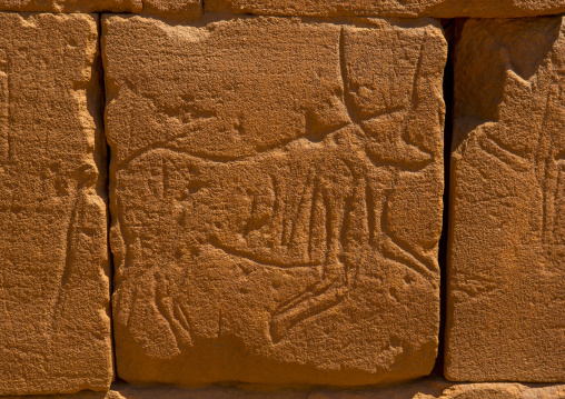 Sudan, Nubia, Naga, animal carving on the elephant temple at musawwarat es-sufra
