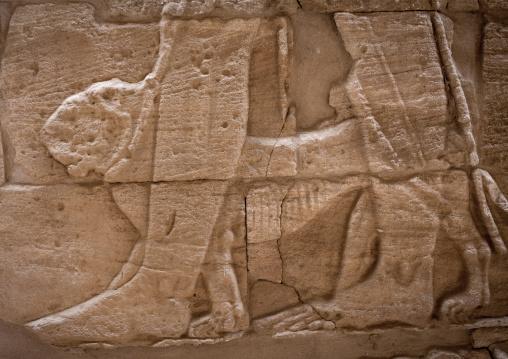 Sudan, Nubia, Naga, the god apedemak walking a lion by a leash in lion temple in musawwarat es-sufra