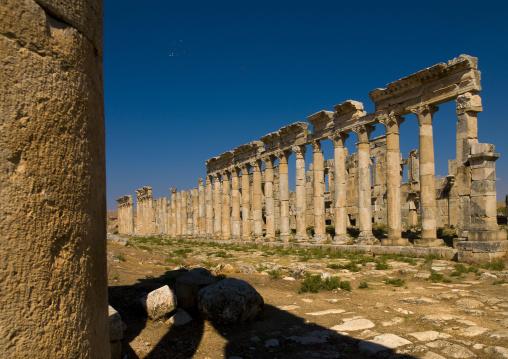 Columned Ancient Street, Apamea, Syria