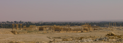 The Ancient Roman City Of Palmyra Panorama, Syria