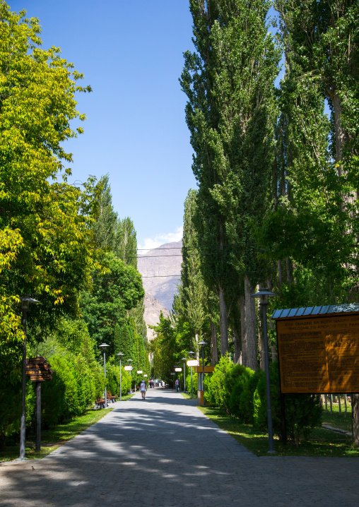 Alley with big trees in Khorog city park, Gorno-Badakhshan autonomous region, Khorog, Tajikistan