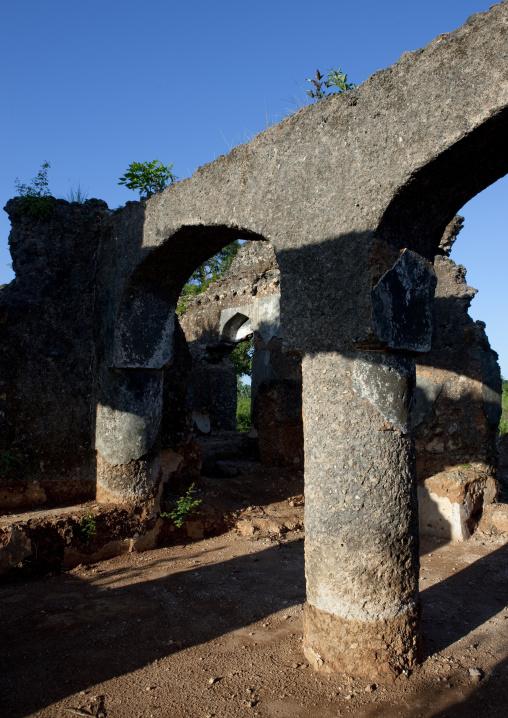 Lady khole ruins, Zanzibar, Tanzania