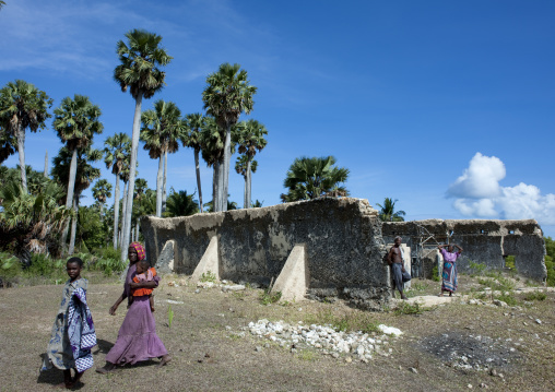 Mosque of mkumbuu ancient town, Pemba, Tanzania