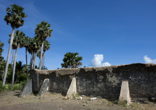 Mosque of mkumbuu ancient town, Pemba, Tanzania