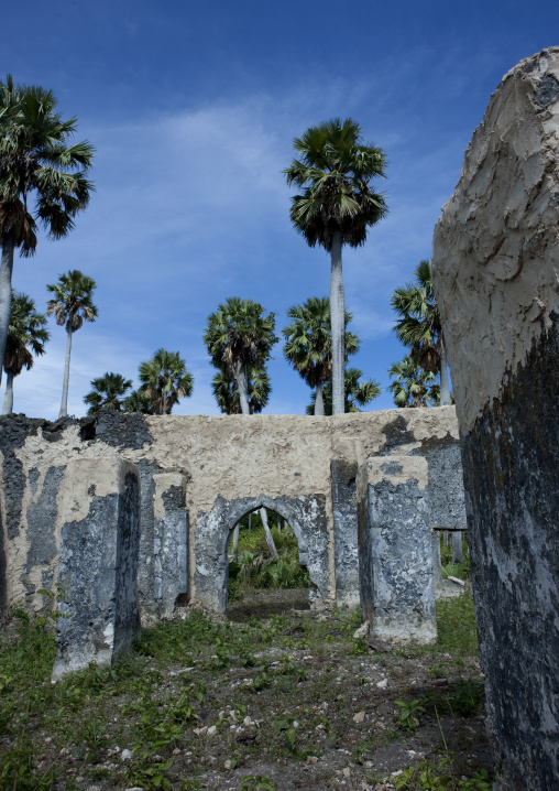 Mkumbuu ancient town, Pemba, Tanzania