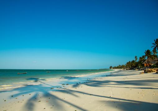 Tanzania, Zanzibar, Jambiani, white beach with palm trees shadows
