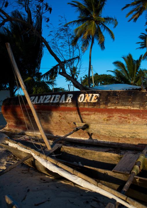 Tanzania, Zanzibar, Kizimkazi, an old wooden fishing dhow resting on a sandy beach between palm trees