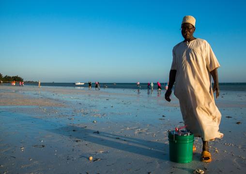 Tanzania, Zanzibar, Kizimkazi, muslim man collecting fishes on a beach
