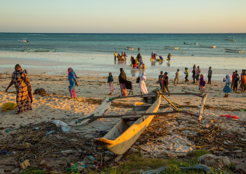 Tanzania, Zanzibar, Kizimkazi, a wooden fishing dhow resting on a sandy beach