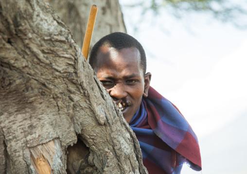 Tanzania, Ashura region, Ngorongoro Conservation Area, maasai man with harelip hidding behind a tree