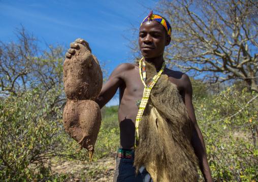 Tanzania, Serengeti Plateau, Lake Eyasi, hadzabe bushman with a root he digged
