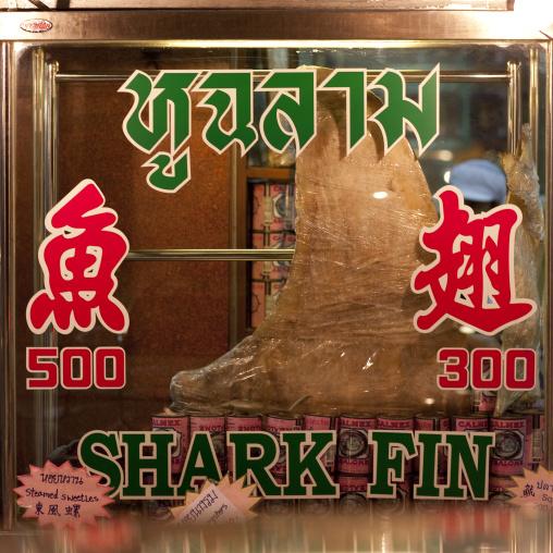 Shark fin in a restaurant, Bangkok thailand