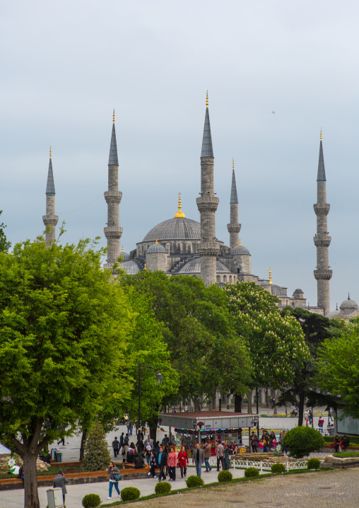 Gardens in front of the the Blue mosque sultan Ahmet Camii, Marmara Region, istanbul, Turkey