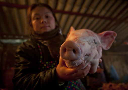 Woman showing a pig s head at sapa s marketplace, Vietnam