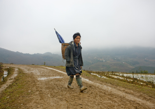 Black hmong boy with an umbrella in the basket carrying on his back, Sapa, Vietnam