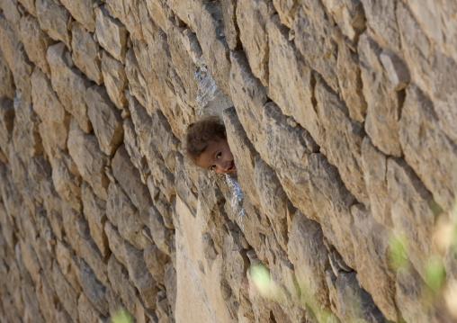 Smiling Girl Showing Up At The Window, Kholan, Yemen