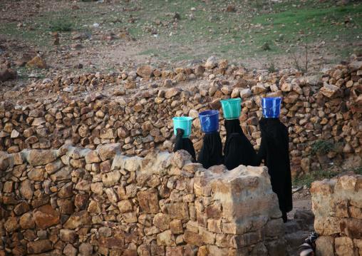 Women In Black Walking In Line With A Bucket On Their Head To Go Fetch Water, Shahara, Yemen