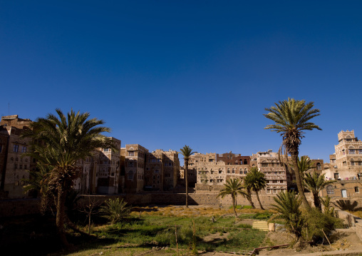Gardens In Old Town Surrounded By Storeyed Tower Houses Built Of Rammed Earth,sanaa, Yemen