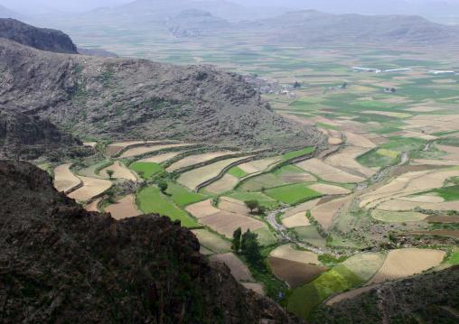 Terrace Farming At The Bottom Of The Mountain, Ibb,  Yemen