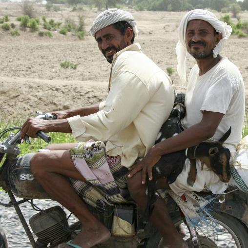 Two Smiling Men And A Goat On A Rusty Suzuki Motorbike, Yemen
