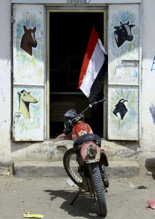 Motocross Parked In Front Of A Shop With Animals Painted On The Doors And A Yemeni Flag, Zabid, Yemen